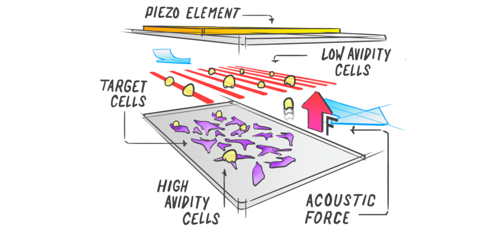 High-Throughput Label-free Cell Interaction Studies