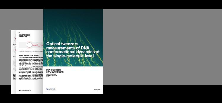 DNA Breathing