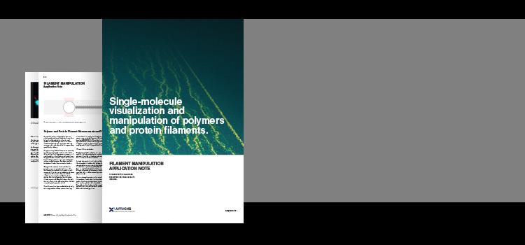 cytoskeleton filament manipulation using optical tweezers fluorescence microscopy