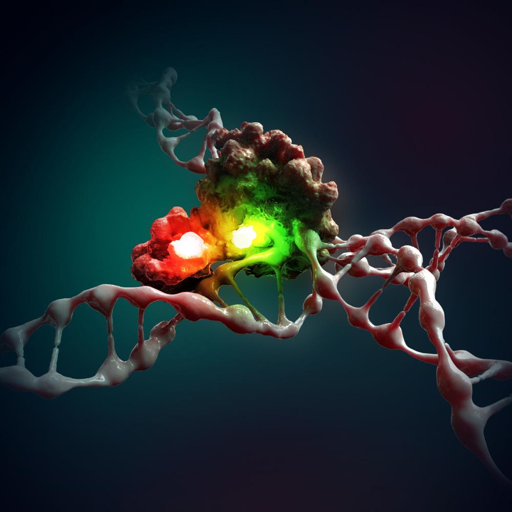 DNA-repair-Nature