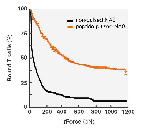 Avidity Curve Na8 Peptide Pulsing DM