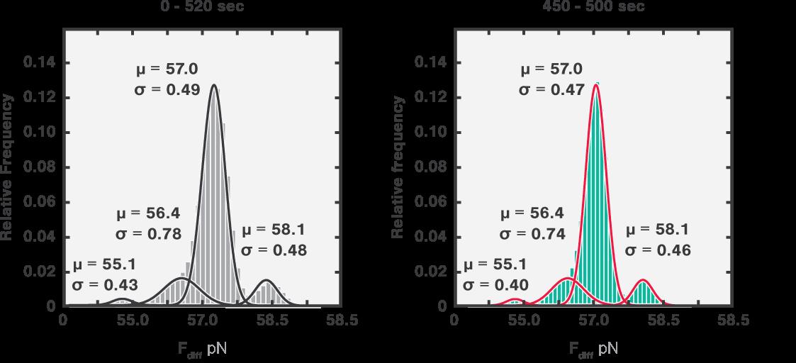 Equilibrium dynamics histograms