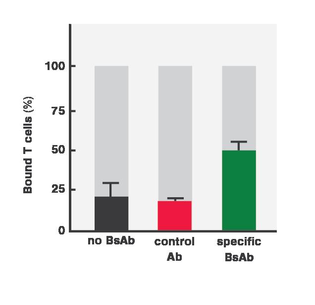 MSKCC Bar Graph