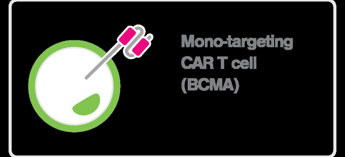 zMovi_CART_mono targeting BCMA CAR T cell