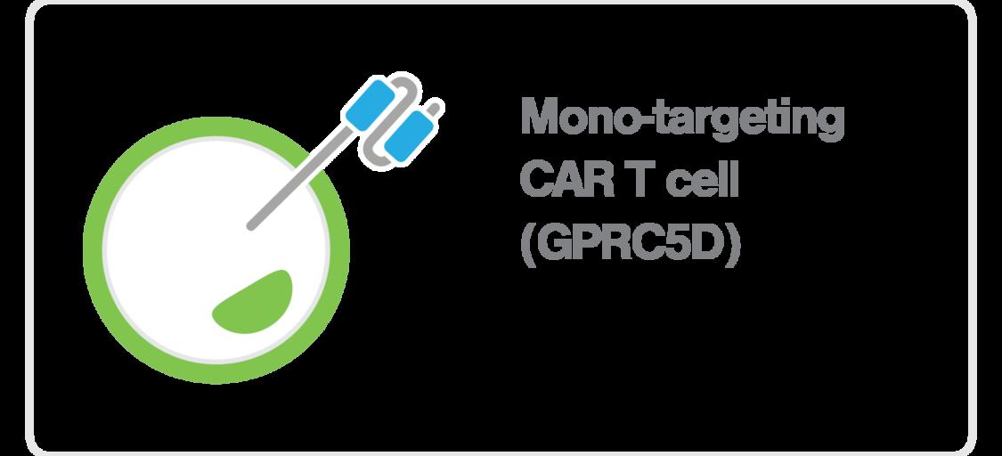 zMovi_CART_mono targeting GPRC5D CAR T cell